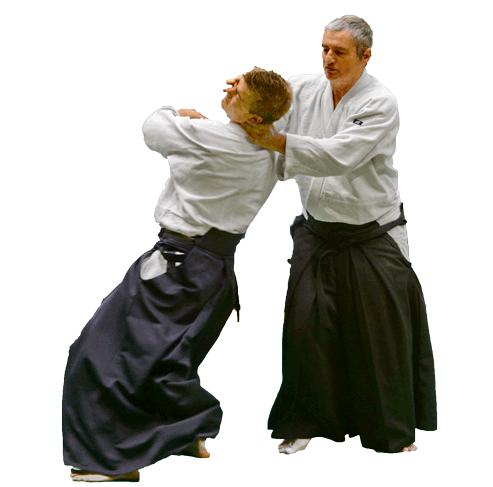 Aikido nantes alain peyrache technique irimi