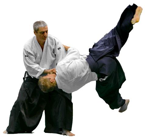 Aikido nantes stage alain peyrache technique