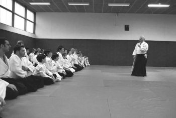 aikido nantes gael smith cours adulte enfant