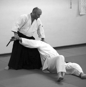 aikido nantes photo gael smith professeur