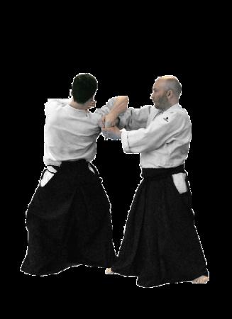 aikido nantes technique shihonage